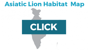 link to asiatic lion map