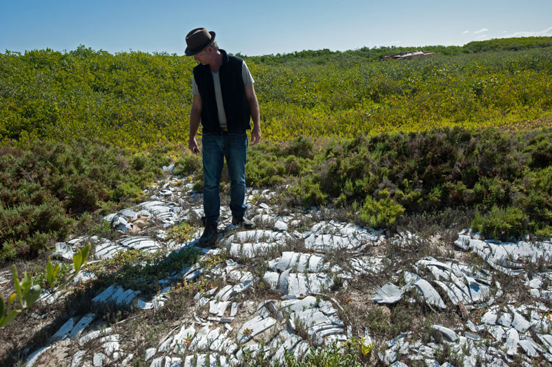 Dr. Wallace J. Nichols inspects an old sea turtle graveyard. Once common, poaching of black turtles has declined dramatically over the past 20 years and numbers of nesting turtles are increasing.