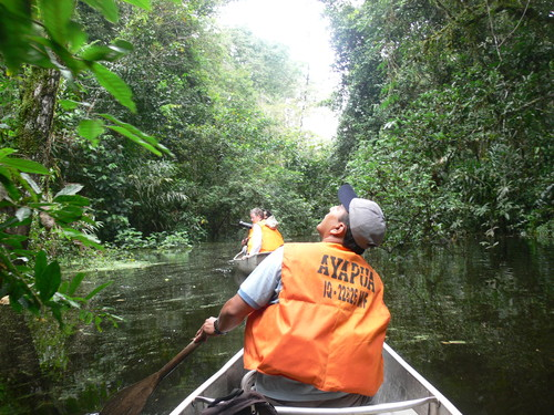 Canoeing down the Amazon River