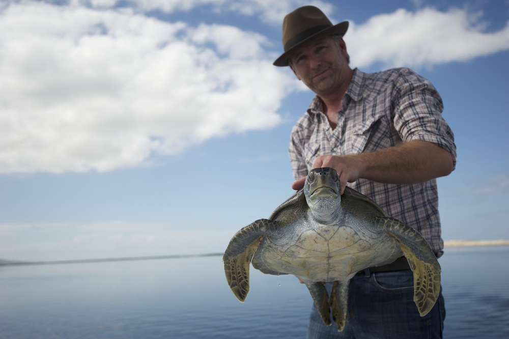 Dr. Wallace J. Nichols rescues a black sea turtle caught in a poachers net. San Carlos, BCS, Mexico.